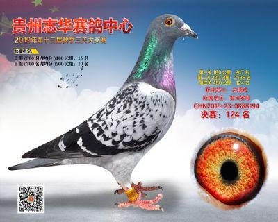 贵州志华决赛124名