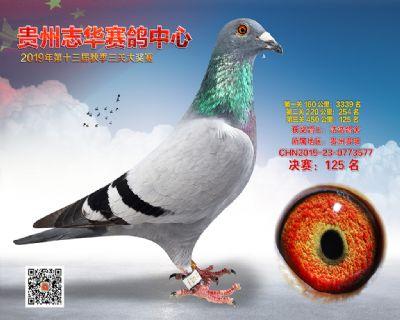 贵州志华决赛125名