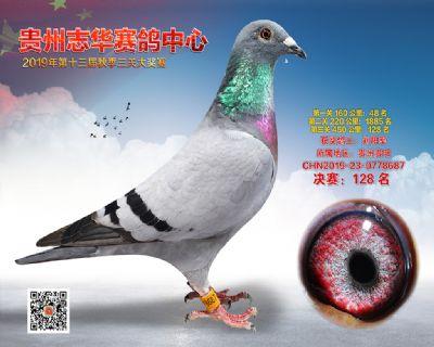 贵州志华决赛128名