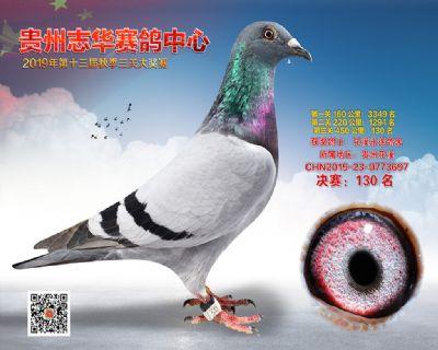 贵州志华决赛130名