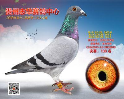 贵州志华决赛138名