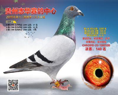 贵州志华决赛140名