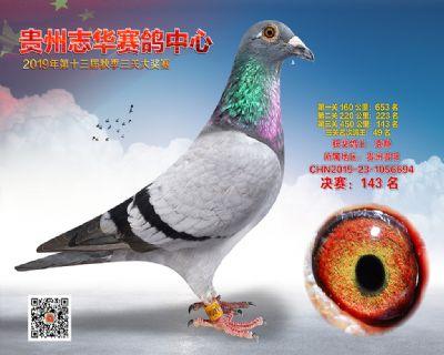 贵州志华决赛143名
