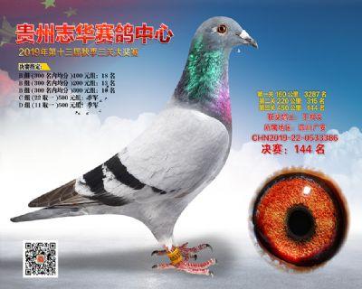 贵州志华决赛144名
