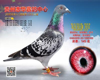 贵州志华决赛145名