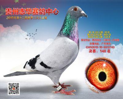 贵州志华决赛148名