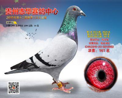 贵州志华决赛161名