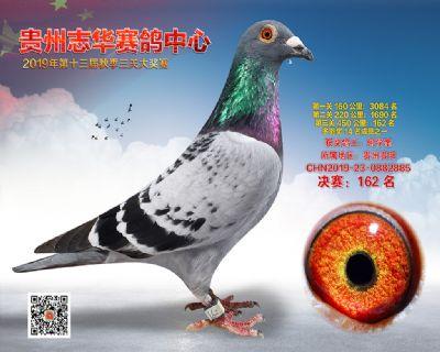 贵州志华决赛162名
