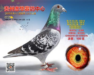 贵州志华决赛199名