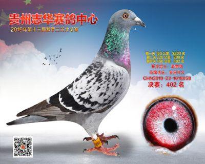 贵州志华决赛402名
