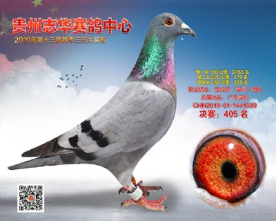 贵州志华决赛405名