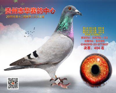 贵州志华决赛404名