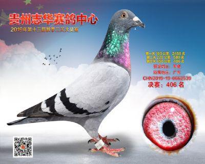 贵州志华决赛406名