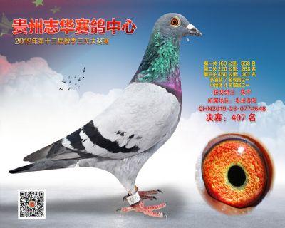 贵州志华决赛407名