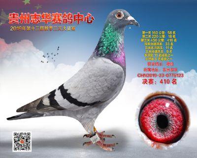 贵州志华决赛410名