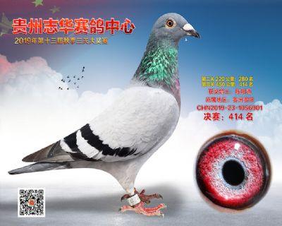 贵州志华决赛414名