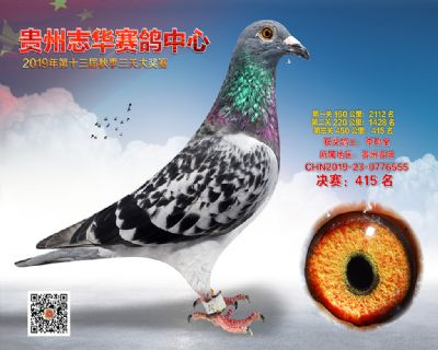 贵州志华决赛415名