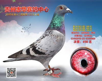 贵州志华决赛498名
