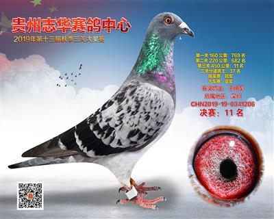 贵州志华决赛11名