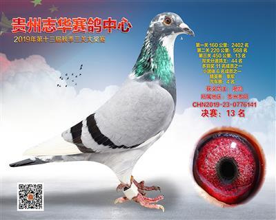 贵州志华决赛13名