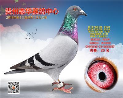 贵州志华决赛20名