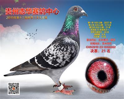 贵州志华决赛21名