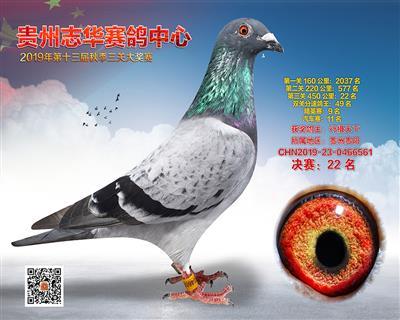 贵州志华决赛22名