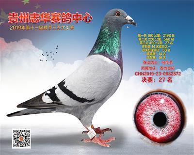 贵州志华决赛27名