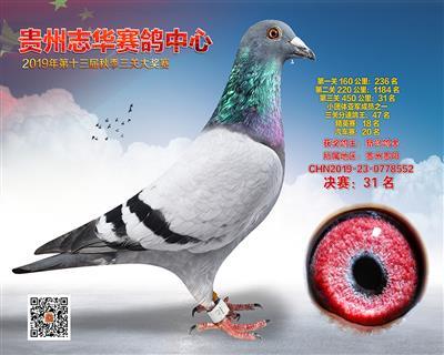 贵州志华决赛31名