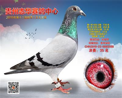 贵州志华决赛35名