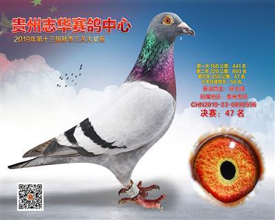 贵州志华决赛47名