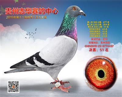 贵州志华决赛51名