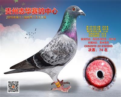 贵州志华决赛74名