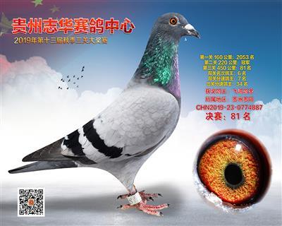 贵州志华决赛81名