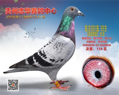 贵州志华决赛114名