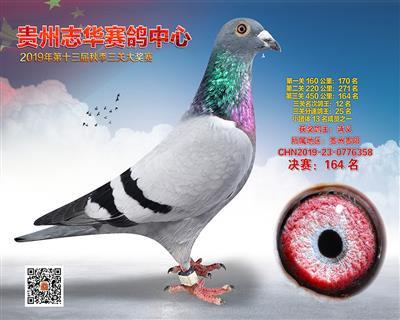 贵州志华决赛164名