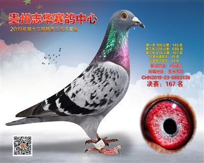 贵州志华决赛167名