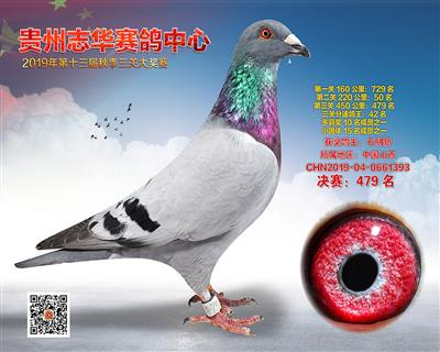 贵州志华决赛479名