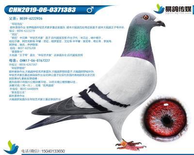 胡本-��g家小子383