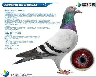 胡本-年�p小子748