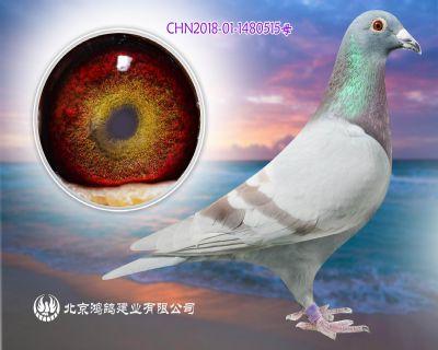 """""""杰夫・凡�乜恕�X98老�t狐外回血�O女"""