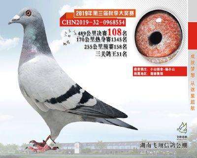 湖南飞翔决赛108名