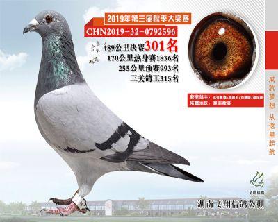 湖南飞翔决赛301名