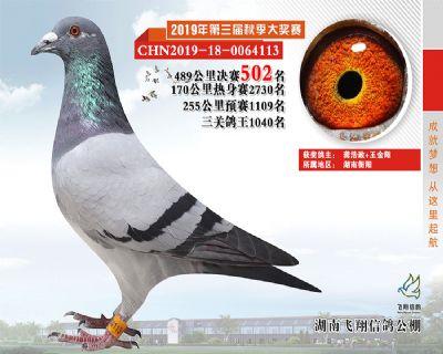 湖南飞翔决赛502名