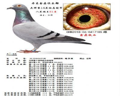 丹东鑫鼎大师赛14关伯马冠军
