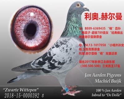 利�W.赫��曼(��王�铍p重近�H)