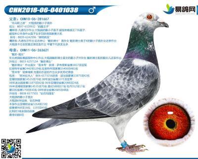 噶斯�D-魅影王子038
