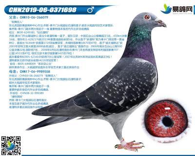佛卡�T-超�潘特698
