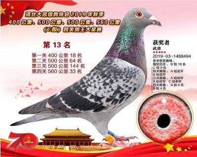 C�M四�P��王13
