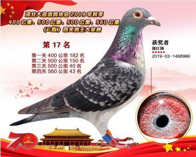 C�M四�P��王17